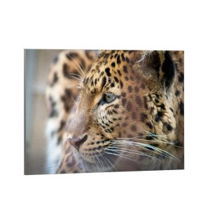 Textielframe – Panter Close-up (id25)