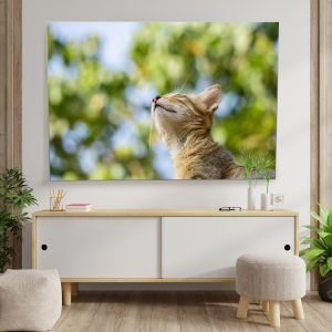 Textile frame - Cat in the spring (id12).