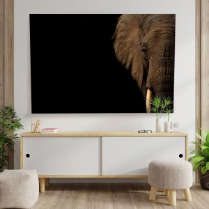 Textile frame - Elephant in the Dark (id17).